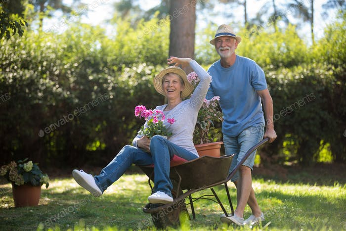 Senior couple playing with a wheelbarrow