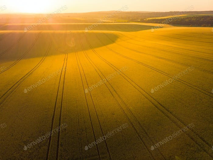 Sunrise oover rolling hills in Moravia, aerial drone view