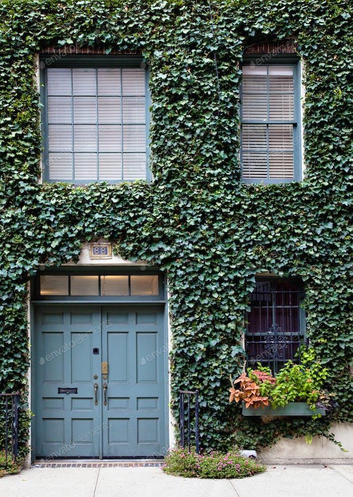 Leaf Covered Building