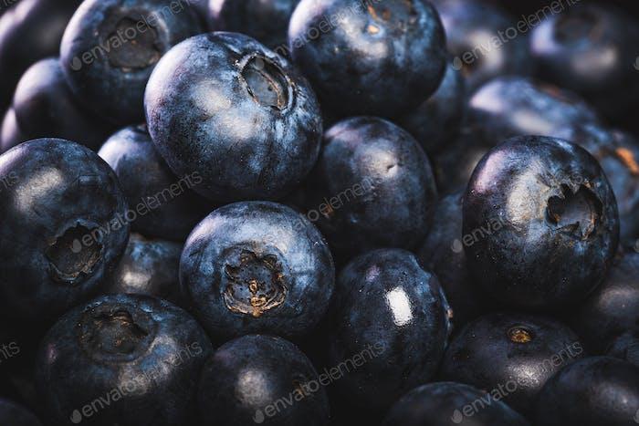 Fresh blueberries isolated on black background