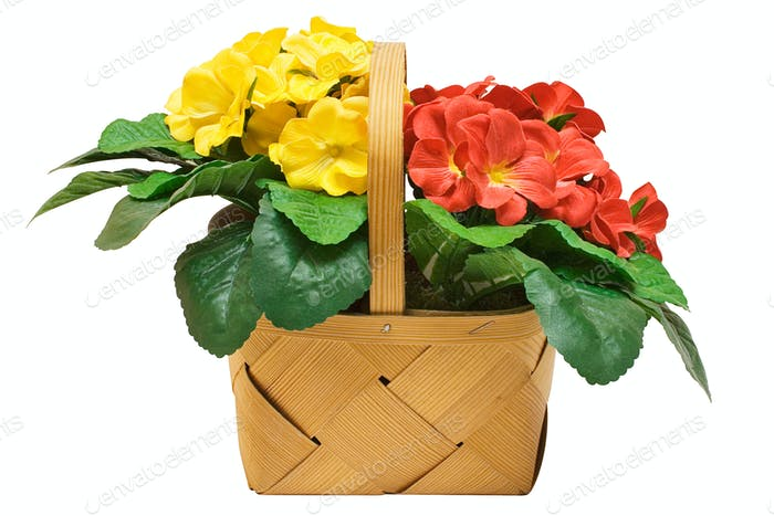 Basket with Flowers with Clipping Path Isolated on a White Background