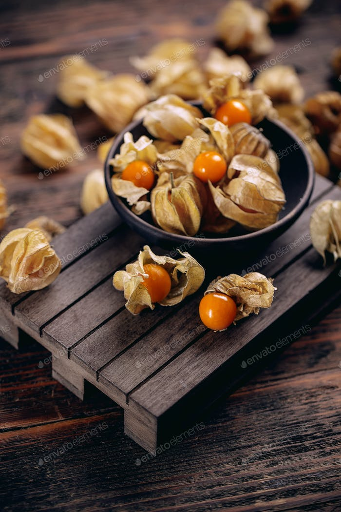 Physalis peruviana or cape gooseberry