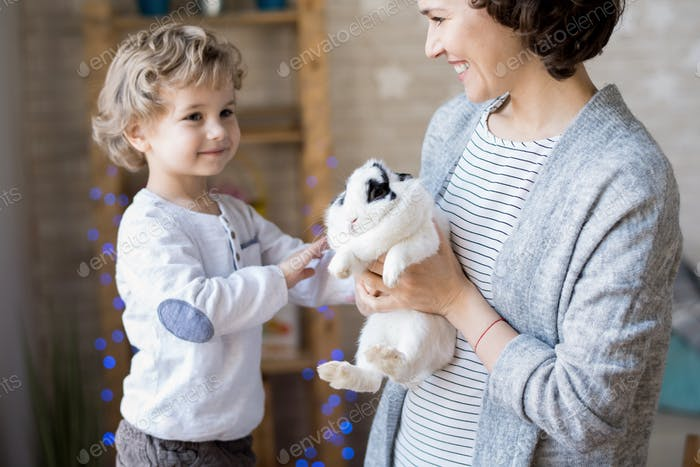 Adorable Blond Boy Playing with Bunny
