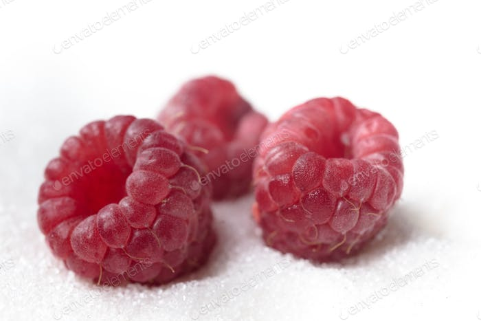 Raspberry isolated over white sugar background.