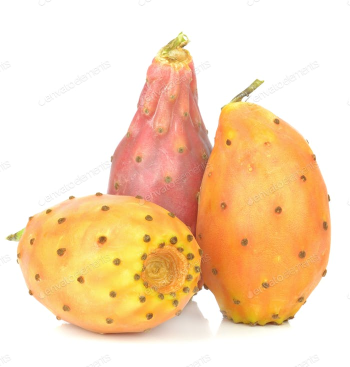 Group of Cactus Figs