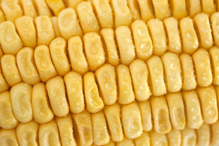 Fresh corn closeup