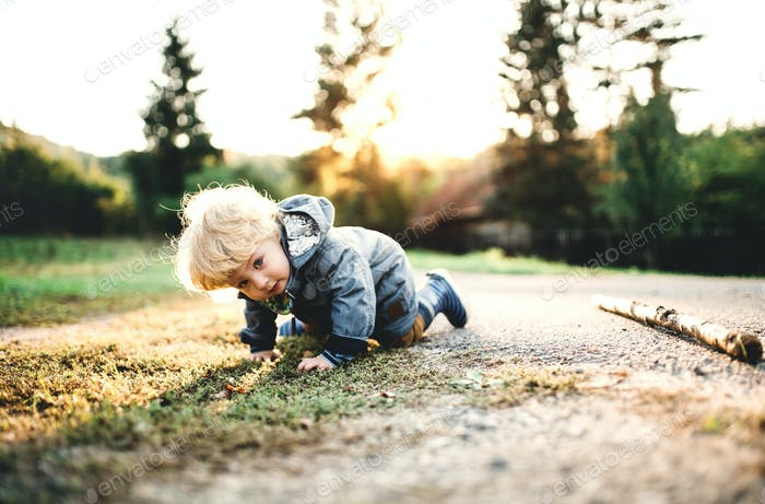 A little toddler boy crawling outdoors on a road at sunset.