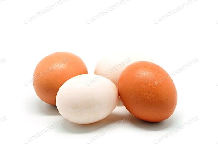 Hühner- und Entenei