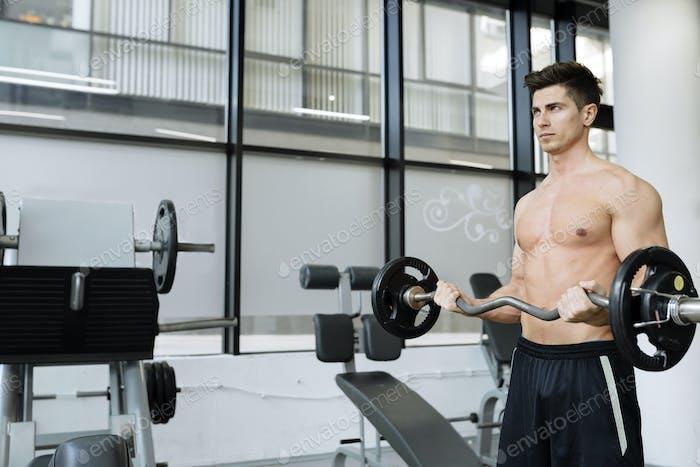 Muscular man bodybuilding in gym