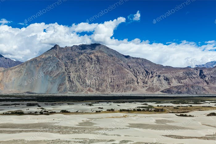 Nubra valley in Himalayas. Ladakh, India