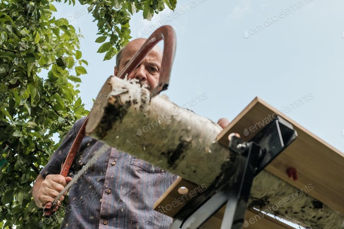 Mature man with mustache holding a saw in hand. Sawing logs, harvesting firewood