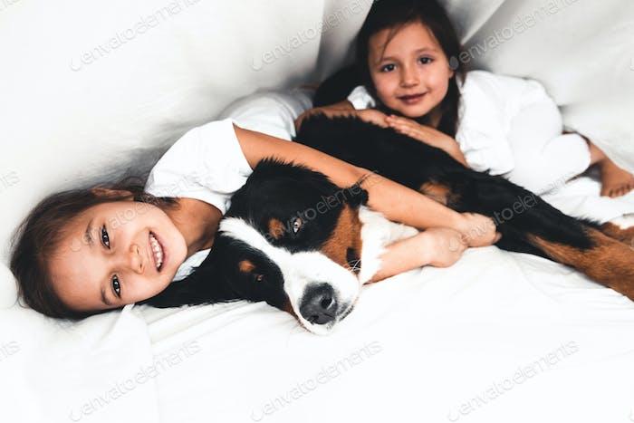 kleine Mädchen im Bett mit Hund Berner Berghund, Freundschaft