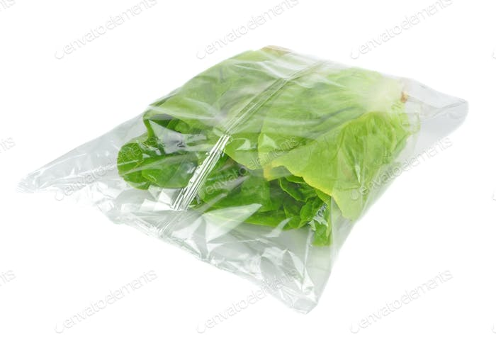 Plastic Bag of Lettuce