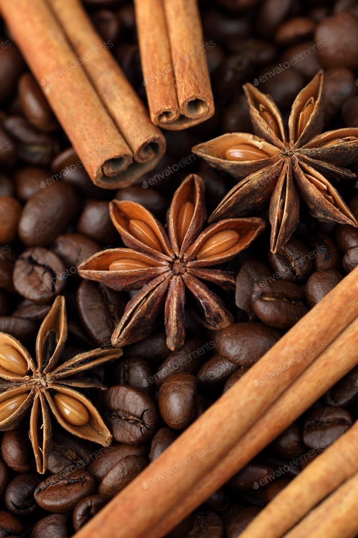 Star anise, cinnamon sticks and coffee beans. Close-up.