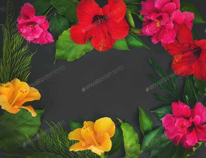 A frame of flowers (hibiscuses and dof roses) and green leaves o