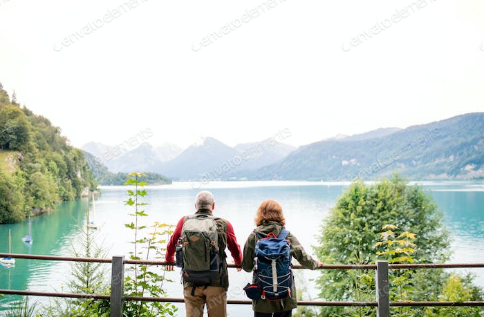 A rear view of senior pensioner couple standing by lake in nature