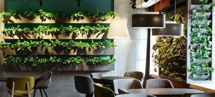 Blumeninterieur im modernen Café mit Pflanzen in Dekorationstöpfen