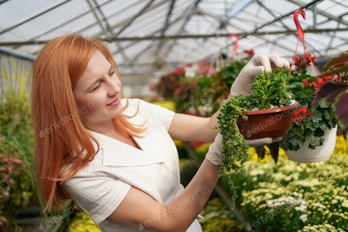 Portrait woman entrepreneur verifying flowers in the green house