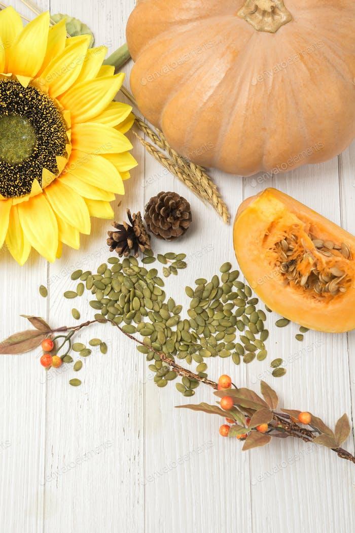 Herbsterntezeit, frischer Kürbis und Kastanie