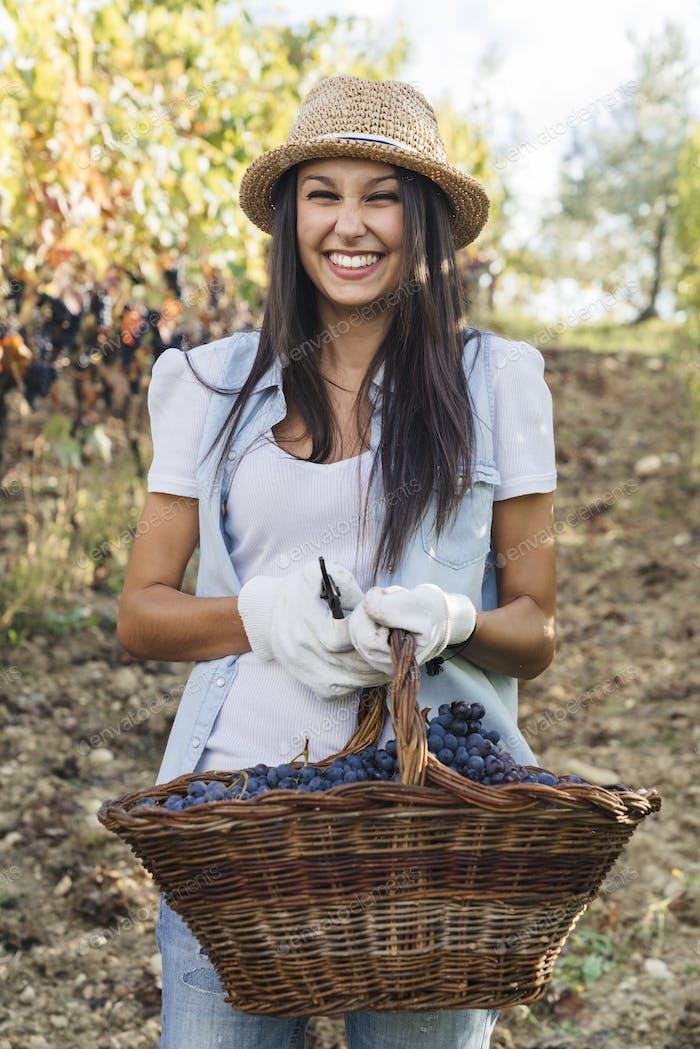 schöne junge Frau hält eine große Traube während der Ernte