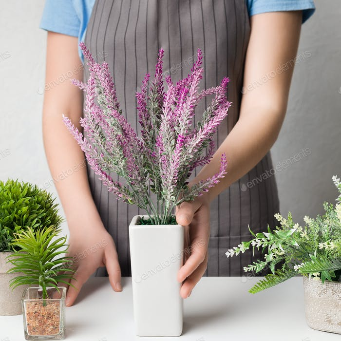Woman putting lavender plant on table, crop