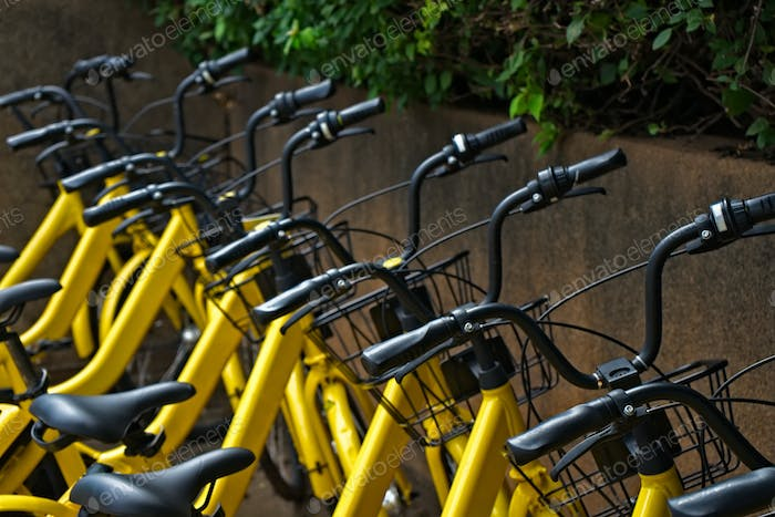 Yellow bicycles parking in row