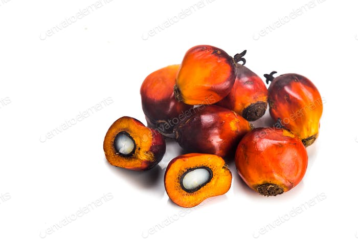 Heaps of freshly harvested oil palm fruits on white background.