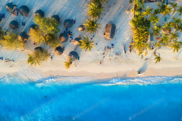 Aerial view of umbrellas, green palms on the sandy beach