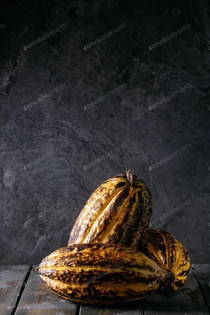 Gelbe Kakaobrucht