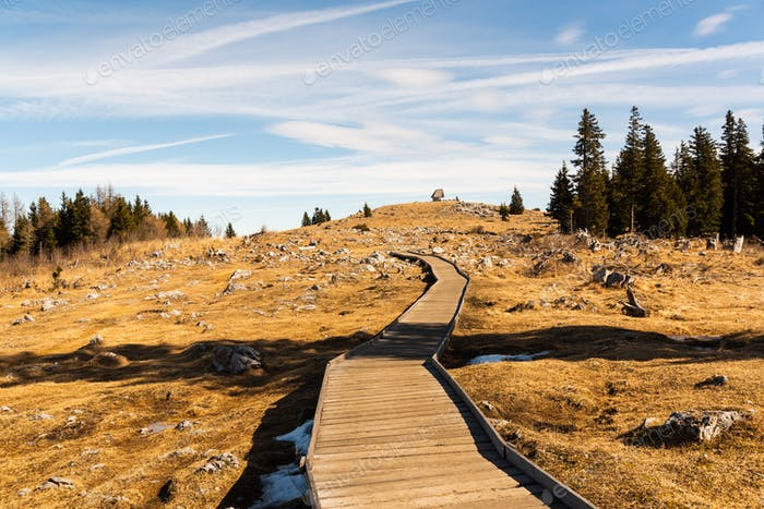 Wooden path at the top of schockl mountain in Graz Austria leading to view point.