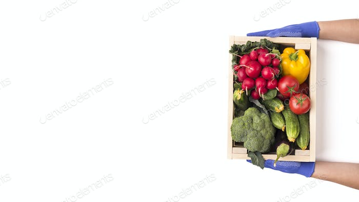Woman in rubber gloves giving big wooden box with vegetables