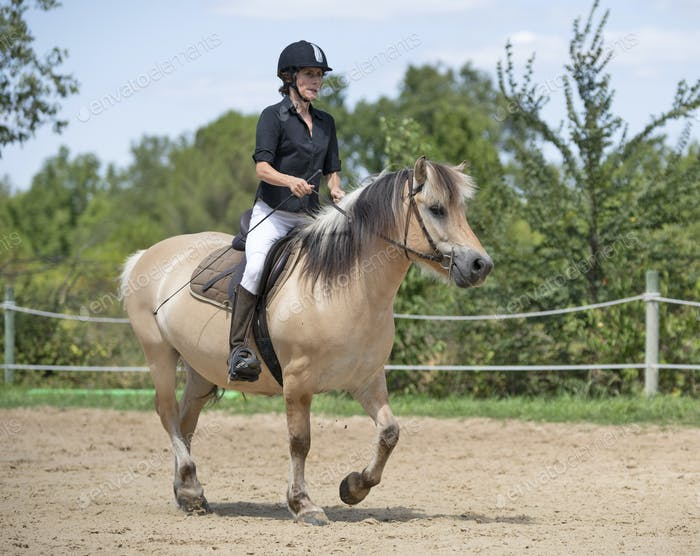 riding girl and horse