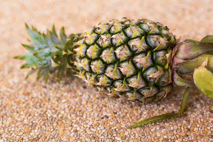 Ripe pineapple lying. Fruits, diet, healthy food concept