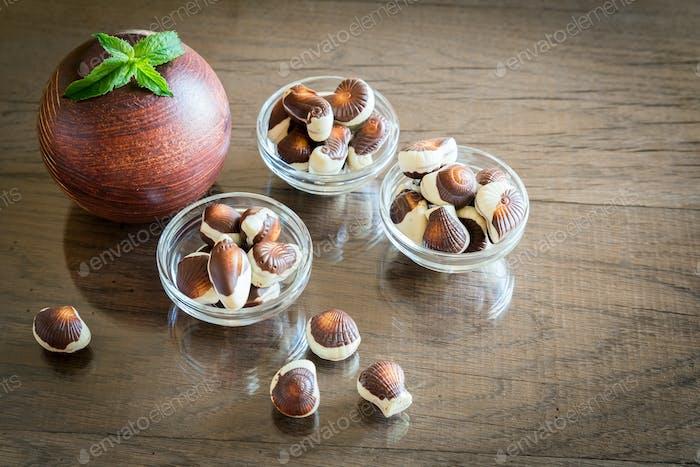 Seashells chocolates