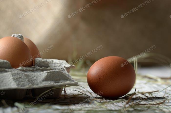 Rohe Bio braune Hühnereier in umweltfreundlichem Papierkarton auf W