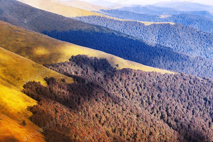 Picturesque autumn mountain ranges covered with red beech forest