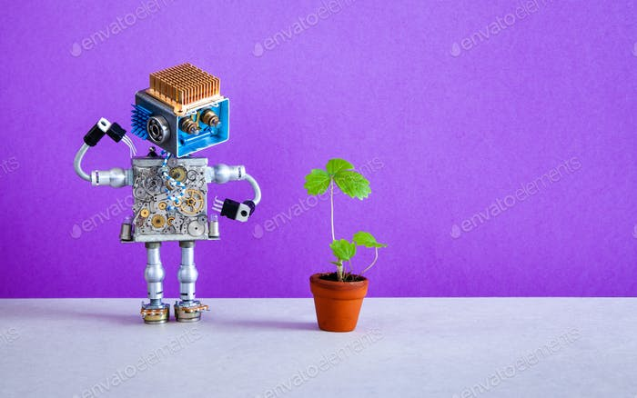 Surprised robot gardener looks at a sprout of strawberry grown in a flower pot