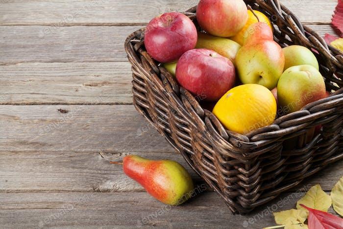 Autumn fruits box