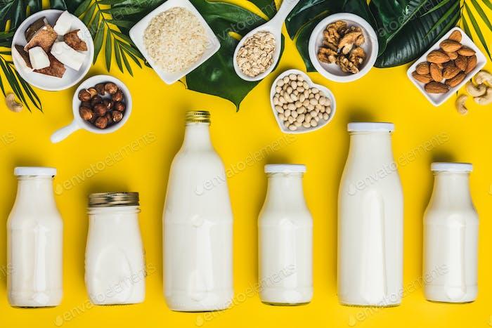 milchfreie Milchersatzgetränke und Zutaten