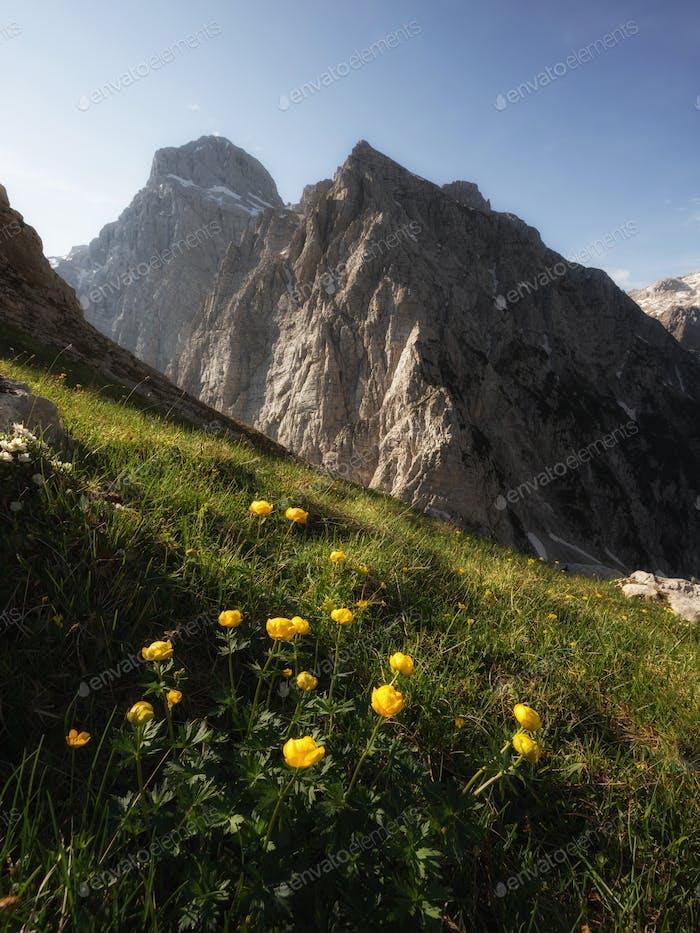 Summer in the Julian Alps mountain landscape