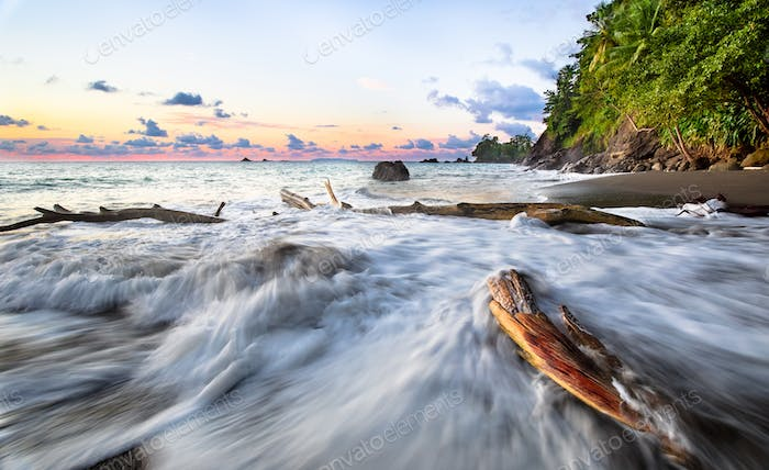 Waves Crash Against Driftwood During Sunset in Costa Rica