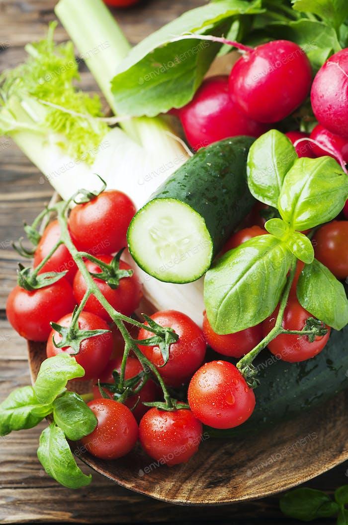 Tomate, Cucmber, Rettich, Basilikum und Fenchel