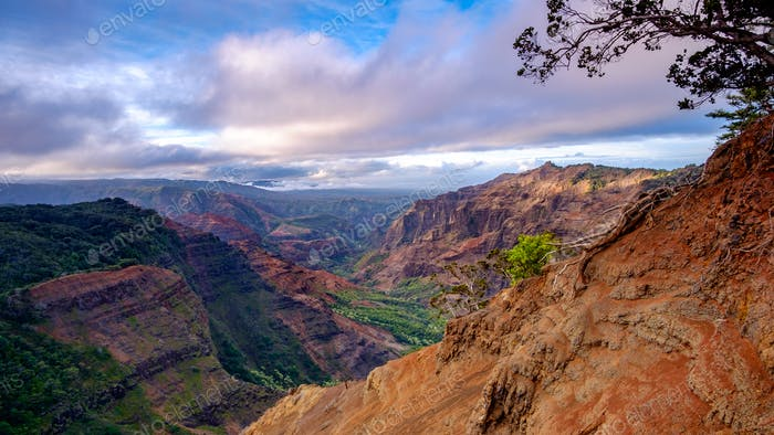 Landscape view of Waimea canyon at sunrise, Kauai, Hawaii