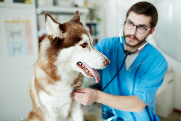 Tratamiento clínico