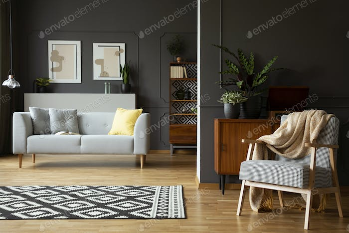 Blanket on armchair in living room interior with patterned carpe