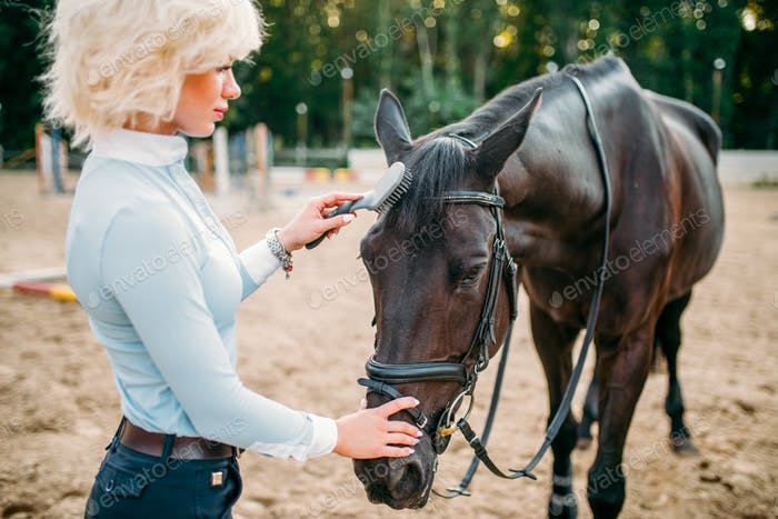 Young blonde woman take caring for brown horse