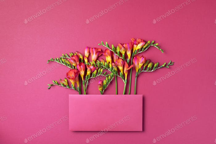 Red and yellow freesia flowers in envelope on pink background. Top view