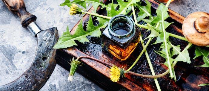 Dandelion tincture in bottle
