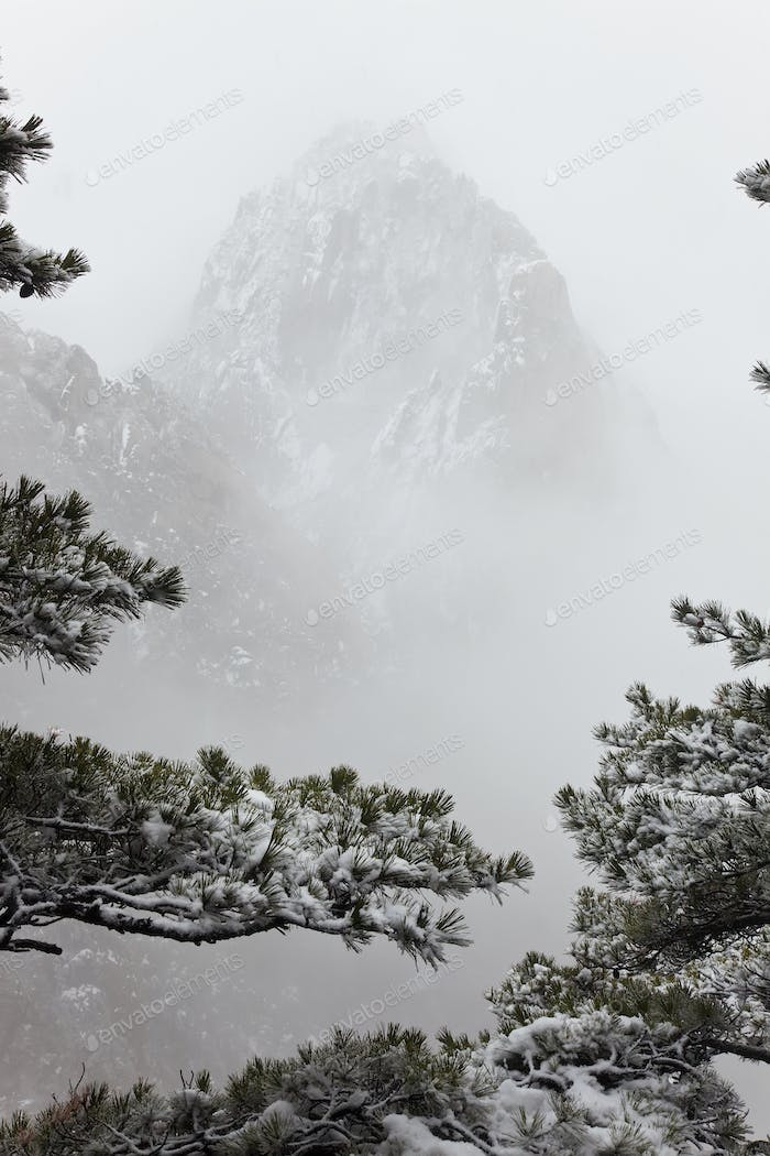 Landscape with trees and snow-capped narrow steep mountain disappearing in the mist.