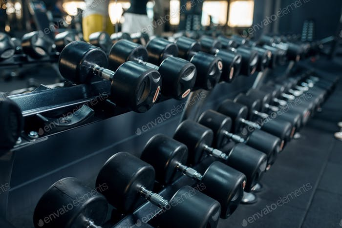 Row of dumbbells in gym closeup, nobody